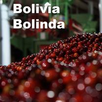 Bolivia Bolinda