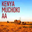 ケニア・ムチョキ