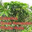 コロンビア・ドゥバン・エルナンデス